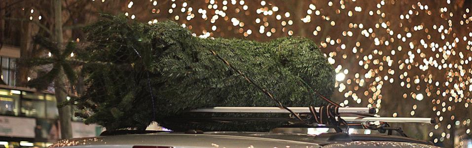 Warum feiern wir Weihnachten? Wo liegt der Ursprung? - Gottkennen.de